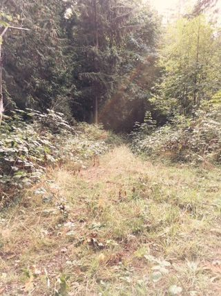 Photo 5: Lot 4 MARINE Drive in Granthams Landing: Gibsons & Area Land for sale (Sunshine Coast)  : MLS®# R2495374