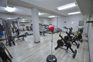 Photo 31: 217 503 ALBANY Way in Edmonton: Zone 27 Condo for sale : MLS®# E4218178