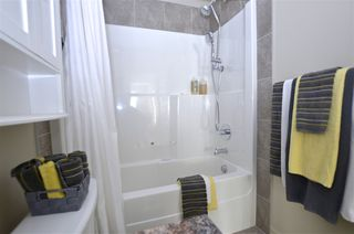 Photo 15: 217 503 ALBANY Way in Edmonton: Zone 27 Condo for sale : MLS®# E4218178