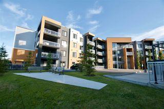Photo 36: 217 503 ALBANY Way in Edmonton: Zone 27 Condo for sale : MLS®# E4218178