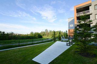 Photo 40: 217 503 ALBANY Way in Edmonton: Zone 27 Condo for sale : MLS®# E4218178