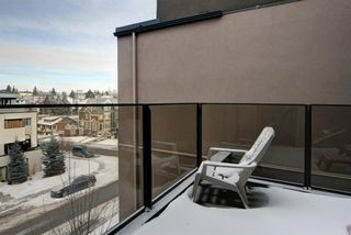 Photo 29: 302 2905 16 Street SW in Calgary: South Calgary Apartment for sale : MLS®# A1059191