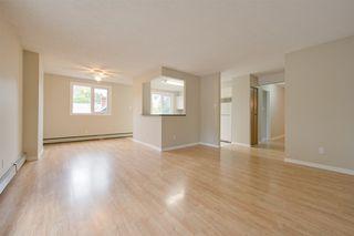Photo 3: 302 9929 113 Street in Edmonton: Zone 12 Condo for sale : MLS®# E4169310