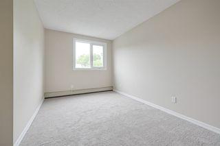 Photo 25: 302 9929 113 Street in Edmonton: Zone 12 Condo for sale : MLS®# E4169310