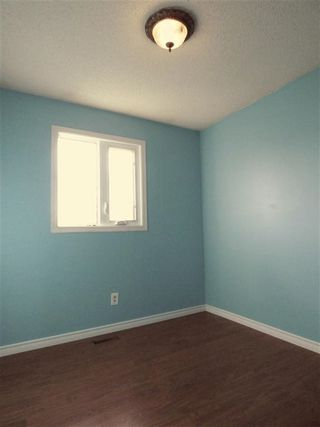 Photo 9: 4511 37B Avenue in Edmonton: Zone 29 House for sale : MLS®# E4178751