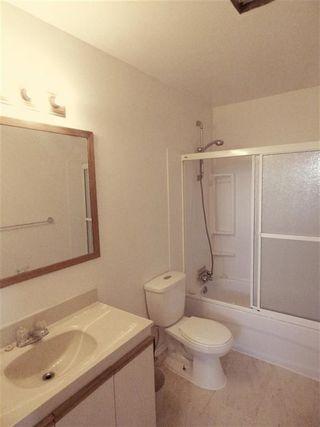 Photo 11: 4511 37B Avenue in Edmonton: Zone 29 House for sale : MLS®# E4178751