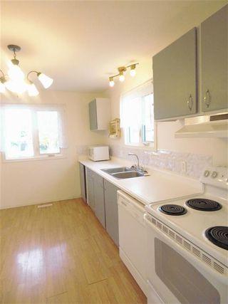 Photo 6: 4511 37B Avenue in Edmonton: Zone 29 House for sale : MLS®# E4178751