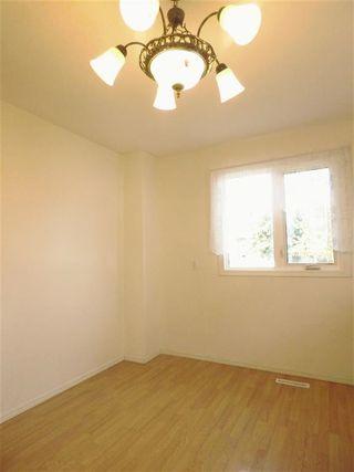 Photo 7: 4511 37B Avenue in Edmonton: Zone 29 House for sale : MLS®# E4178751