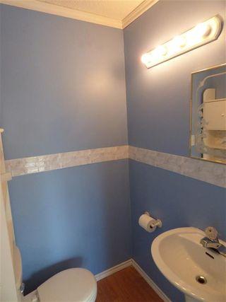 Photo 12: 4511 37B Avenue in Edmonton: Zone 29 House for sale : MLS®# E4178751