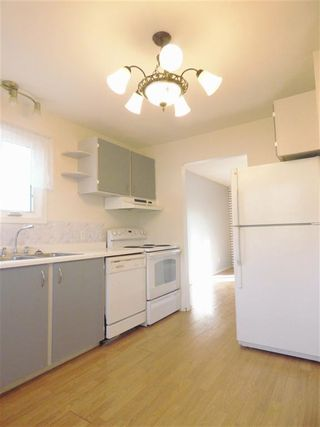 Photo 5: 4511 37B Avenue in Edmonton: Zone 29 House for sale : MLS®# E4178751