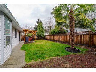 Photo 32: 12336 NIKOLA Street in Pitt Meadows: Central Meadows House for sale : MLS®# R2523791