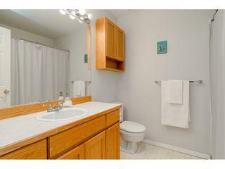 Photo 25: 12336 NIKOLA Street in Pitt Meadows: Central Meadows House for sale : MLS®# R2523791
