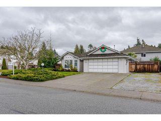 Photo 3: 12336 NIKOLA Street in Pitt Meadows: Central Meadows House for sale : MLS®# R2523791