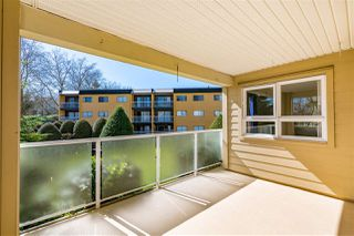 """Photo 20: 102 20125 55A Avenue in Langley: Langley City Condo for sale in """"BLACKBERRY LANE II"""" : MLS®# R2481184"""