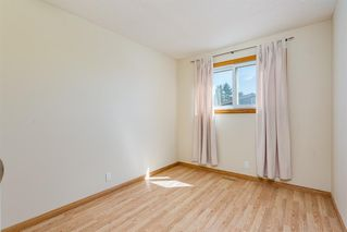 Photo 16: 56 JENSEN Crescent NE: Airdrie Detached for sale : MLS®# A1019377