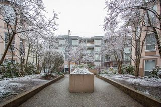 "Photo 26: 305 2435 WELCHER Avenue in Port Coquitlam: Central Pt Coquitlam Condo for sale in ""STERLING CLASSIC"" : MLS®# R2524779"