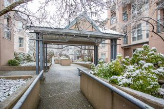 "Photo 24: 305 2435 WELCHER Avenue in Port Coquitlam: Central Pt Coquitlam Condo for sale in ""STERLING CLASSIC"" : MLS®# R2524779"