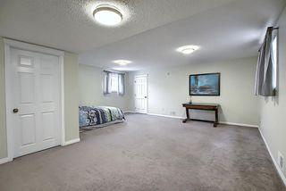 Photo 35: 4768 156 Avenue in Edmonton: Zone 03 House for sale : MLS®# E4218885
