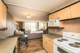 Photo 25: 505 10011 116 Street in Edmonton: Zone 12 Condo for sale : MLS®# E4200203