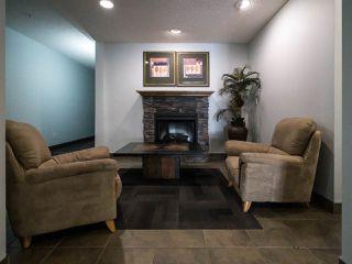 Photo 15:  in Edmonton: Zone 12 Condo for sale : MLS®# E4202342