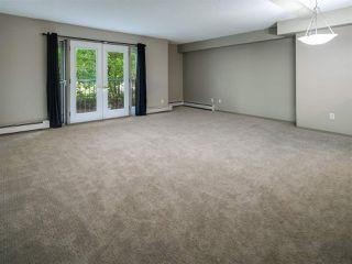 Photo 3:  in Edmonton: Zone 12 Condo for sale : MLS®# E4202342