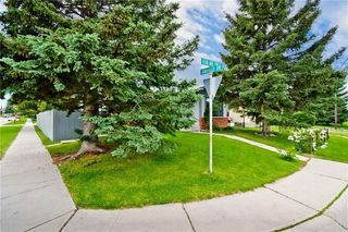 Photo 33: 3203 108 Avenue SW in Calgary: Cedarbrae Detached for sale : MLS®# C4305653
