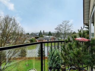 Photo 19: 305 7070 West Saanich Rd in Central Saanich: CS Brentwood Bay Condo for sale : MLS®# 842049