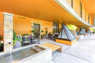 Photo 37: 202 1212 HUNTER Road in Delta: Beach Grove Condo for sale (Tsawwassen)  : MLS®# R2481051