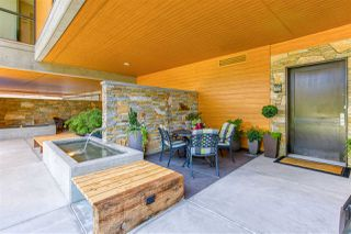 Photo 39: 202 1212 HUNTER Road in Delta: Beach Grove Condo for sale (Tsawwassen)  : MLS®# R2481051
