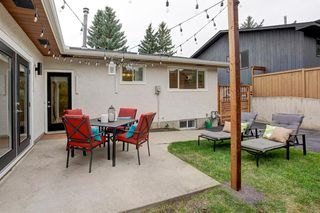 Photo 31: 6012 84 Street NW in Calgary: Silver Springs Detached for sale : MLS®# A1025546