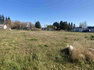 Photo 33: 10227 104 Avenue: Westlock Business with Property for sale : MLS®# E4217729