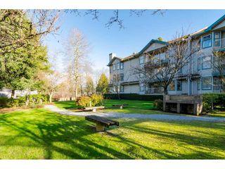 """Photo 24: 104 10756 138 Street in Surrey: Whalley Condo for sale in """"Vista Ridge"""" (North Surrey)  : MLS®# R2528394"""