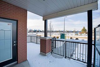 Photo 35: 101 5001 ETON Boulevard: Sherwood Park Condo for sale : MLS®# E4172695