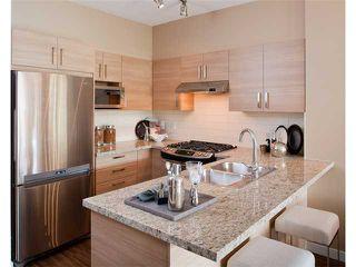 Photo 2: 320 3178 Dayanee Springs Bvld in TAMARACK: Home for sale : MLS®# V938182