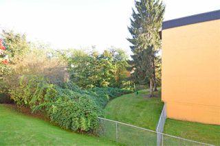 "Photo 10: 103 20064 56 Avenue in Langley: Langley City Condo for sale in ""Baldi Creek Cove"" : MLS®# R2507572"