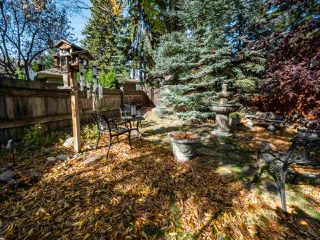 Photo 41: 40 ST GEORGE'S Crescent in Edmonton: Zone 11 House for sale : MLS®# E4217939