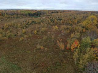 Photo 5: Lot Nollett Beckwith Road in Burlington: 404-Kings County Vacant Land for sale (Annapolis Valley)  : MLS®# 202021749