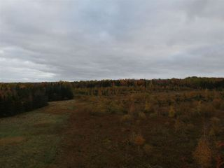 Photo 3: Lot Nollett Beckwith Road in Burlington: 404-Kings County Vacant Land for sale (Annapolis Valley)  : MLS®# 202021749