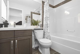 Photo 8: 4325 Cooke Lane in Edmonton: Zone 55 House Half Duplex for sale : MLS®# E4174983