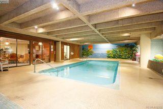 Photo 20: 103 2605 Windsor Road in VICTORIA: OB South Oak Bay Condo Apartment for sale (Oak Bay)  : MLS®# 419302