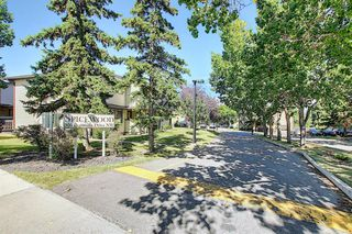 Photo 29: 58 380 BERMUDA Drive NW in Calgary: Beddington Heights Row/Townhouse for sale : MLS®# A1026855