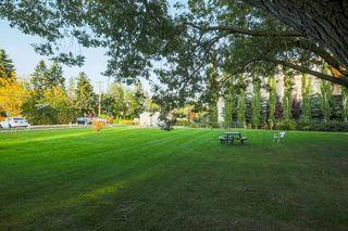 Photo 18: 8 6815 112 Street in Edmonton: Zone 15 Condo for sale : MLS®# E4214424