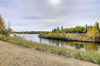 Photo 50: 1318 48 INVERNESS Gate SE in Calgary: McKenzie Towne Apartment for sale : MLS®# A1036306