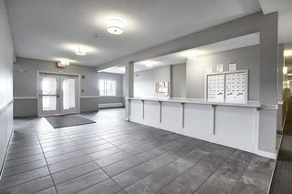 Photo 26: 305 12 Sage Hill Terrace NW in Calgary: Sage Hill Apartment for sale : MLS®# A1051078