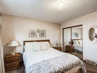 Photo 9: 1019 Mckinnon Drive NE in Calgary: Mayland Heights Semi Detached for sale : MLS®# A1054776
