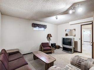 Photo 16: 1019 Mckinnon Drive NE in Calgary: Mayland Heights Semi Detached for sale : MLS®# A1054776