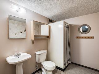 Photo 12: 1019 Mckinnon Drive NE in Calgary: Mayland Heights Semi Detached for sale : MLS®# A1054776