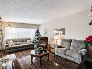 Photo 2: 1019 Mckinnon Drive NE in Calgary: Mayland Heights Semi Detached for sale : MLS®# A1054776