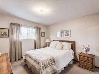 Photo 8: 1019 Mckinnon Drive NE in Calgary: Mayland Heights Semi Detached for sale : MLS®# A1054776