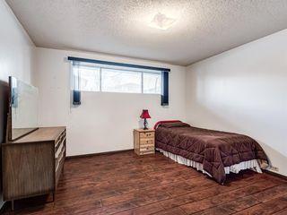 Photo 17: 1019 Mckinnon Drive NE in Calgary: Mayland Heights Semi Detached for sale : MLS®# A1054776